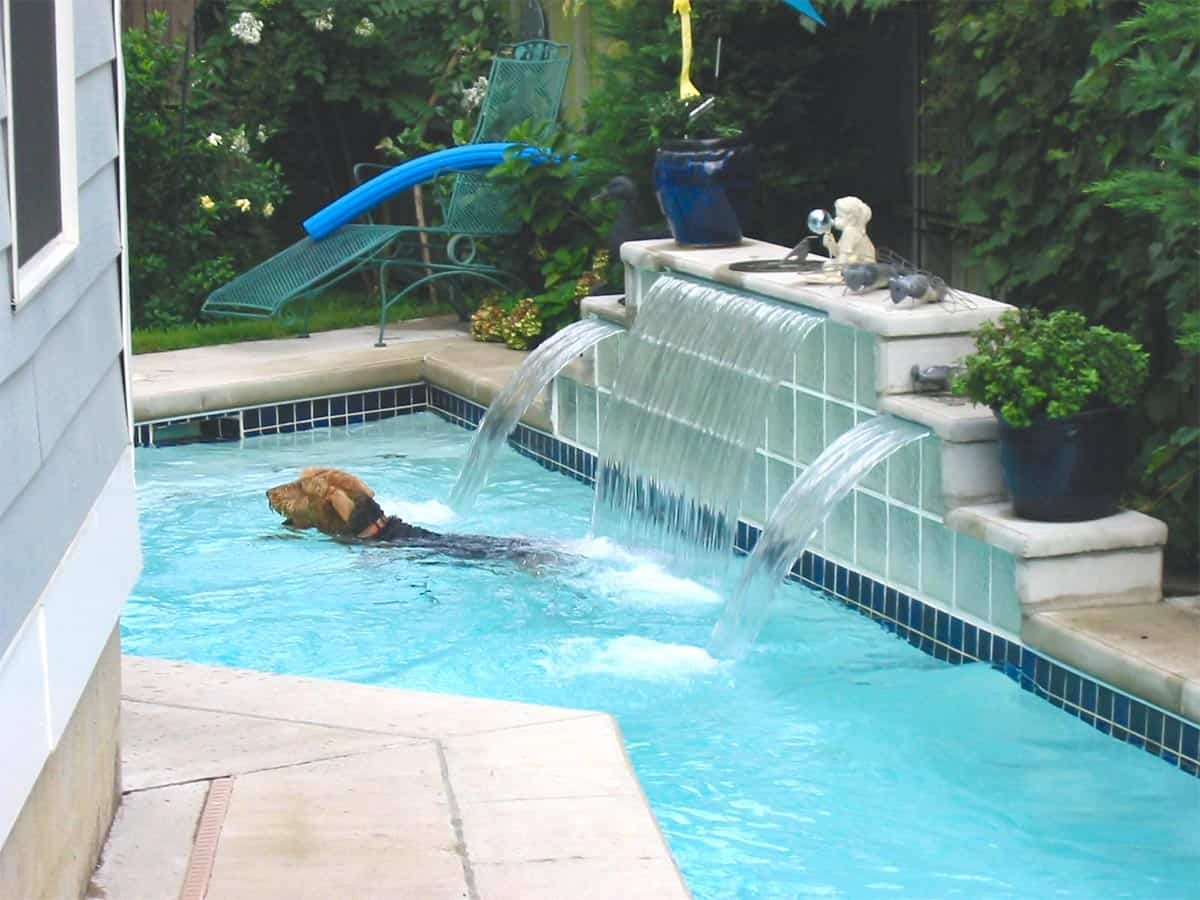 Swimming Pool Ideas Custom In Ground Swimming Pools Memphis